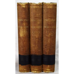Principles of Social Science. [3 volumes set]